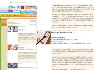 テレビ朝日HP掲載|水引屋・大橋丹治
