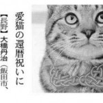 日経新聞掲載 猫の水引型お守り(首輪)アイキャッチ用
